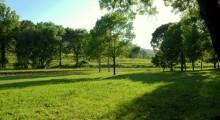 Parc bastide du capelier